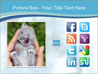 Blue Rabbit PowerPoint Template - Slide 21