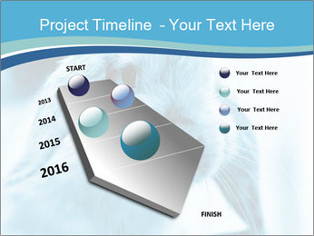 Blue Rabbit PowerPoint Template - Slide 26