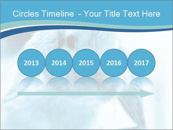 Blue Rabbit PowerPoint Template - Slide 29