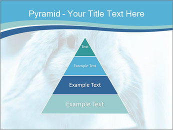 Blue Rabbit PowerPoint Template - Slide 30