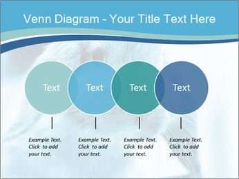 Blue Rabbit PowerPoint Template - Slide 32