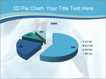 Blue Rabbit PowerPoint Template - Slide 35
