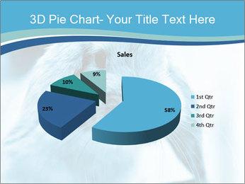 Blue Rabbit PowerPoint Templates - Slide 35