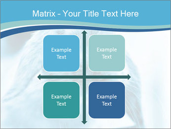 Blue Rabbit PowerPoint Template - Slide 37