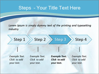 Blue Rabbit PowerPoint Template - Slide 4