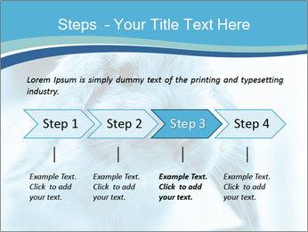 Blue Rabbit PowerPoint Templates - Slide 4