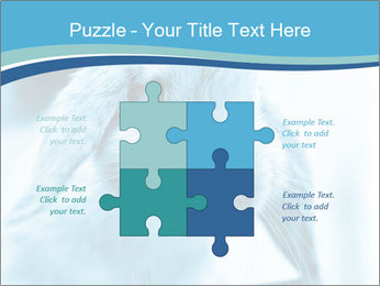 Blue Rabbit PowerPoint Template - Slide 43
