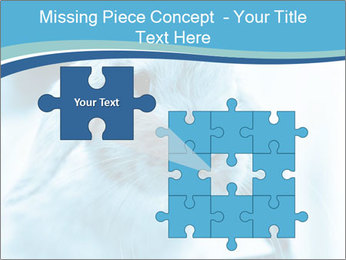 Blue Rabbit PowerPoint Template - Slide 45