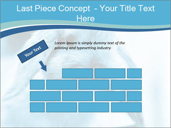 Blue Rabbit PowerPoint Template - Slide 46