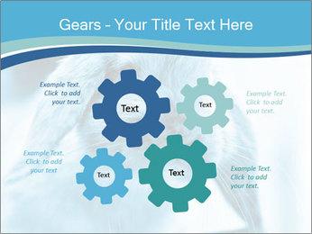 Blue Rabbit PowerPoint Templates - Slide 47