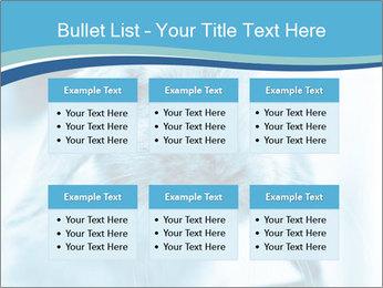 Blue Rabbit PowerPoint Templates - Slide 56