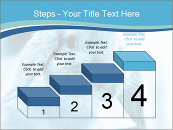 Blue Rabbit PowerPoint Template - Slide 64