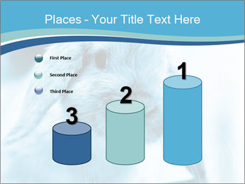 Blue Rabbit PowerPoint Template - Slide 65