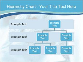 Blue Rabbit PowerPoint Templates - Slide 67