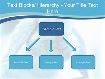 Blue Rabbit PowerPoint Template - Slide 69