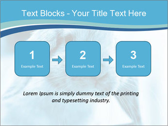 Blue Rabbit PowerPoint Template - Slide 71