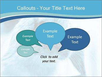 Blue Rabbit PowerPoint Templates - Slide 73
