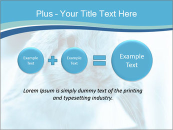 Blue Rabbit PowerPoint Template - Slide 75