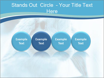 Blue Rabbit PowerPoint Template - Slide 76