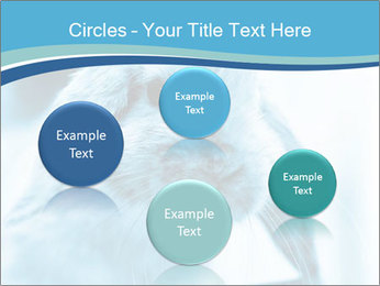 Blue Rabbit PowerPoint Template - Slide 77