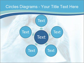 Blue Rabbit PowerPoint Template - Slide 78