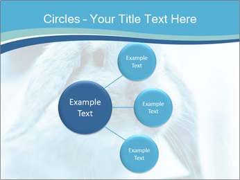 Blue Rabbit PowerPoint Templates - Slide 79