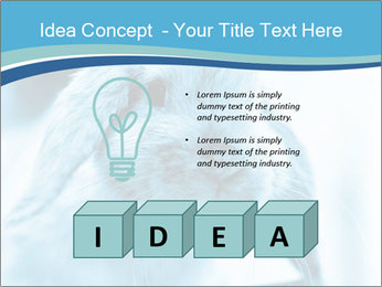 Blue Rabbit PowerPoint Template - Slide 80