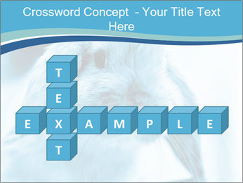Blue Rabbit PowerPoint Template - Slide 82