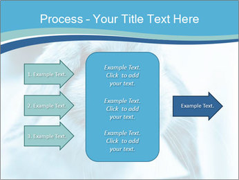 Blue Rabbit PowerPoint Templates - Slide 85