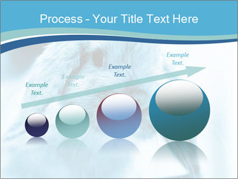 Blue Rabbit PowerPoint Template - Slide 87