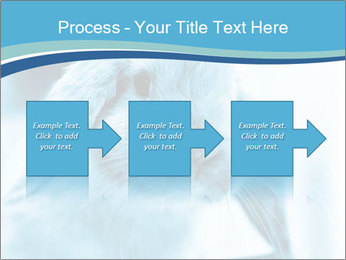 Blue Rabbit PowerPoint Template - Slide 88
