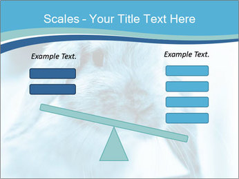 Blue Rabbit PowerPoint Template - Slide 89