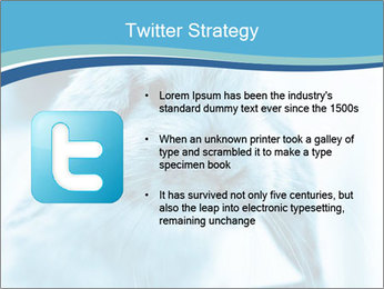 Blue Rabbit PowerPoint Template - Slide 9
