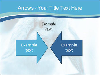 Blue Rabbit PowerPoint Templates - Slide 90