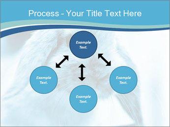 Blue Rabbit PowerPoint Template - Slide 91
