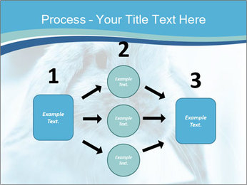Blue Rabbit PowerPoint Template - Slide 92
