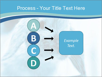 Blue Rabbit PowerPoint Templates - Slide 94