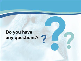 Blue Rabbit PowerPoint Templates - Slide 96
