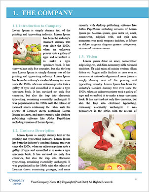 0000090188 Word Template - Page 3