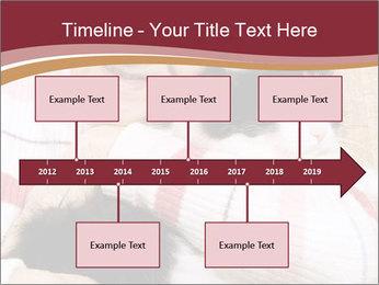 Grandmama Hugs Cat PowerPoint Template - Slide 28