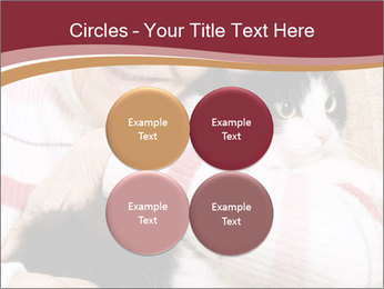 Grandmama Hugs Cat PowerPoint Template - Slide 38