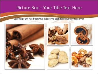 Cinnamon Spice PowerPoint Template - Slide 19