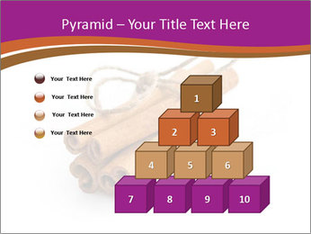 Cinnamon Spice PowerPoint Template - Slide 31
