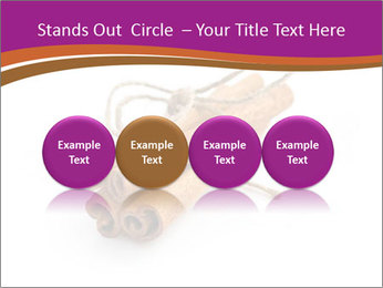 Cinnamon Spice PowerPoint Template - Slide 76