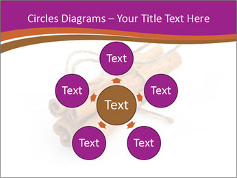 Cinnamon Spice PowerPoint Template - Slide 78