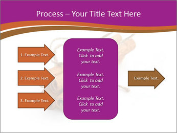 Cinnamon Spice PowerPoint Template - Slide 85