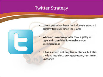 Cinnamon Spice PowerPoint Template - Slide 9
