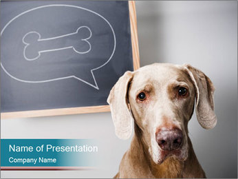 Hungry Dog PowerPoint Template - Slide 1