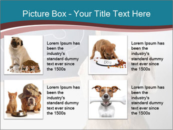 Hungry Dog PowerPoint Template - Slide 14
