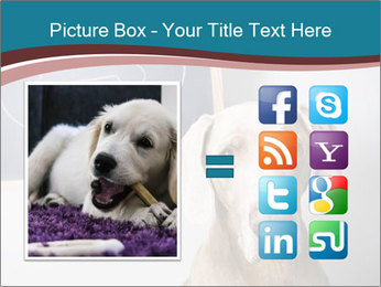 Hungry Dog PowerPoint Template - Slide 21